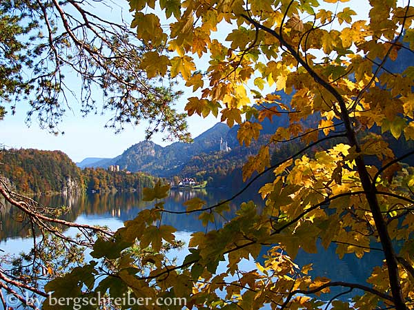 Herbstimpression am Alpsee
